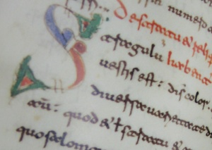 Image from a PIMS manuscript